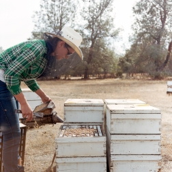 Pendell Apiary